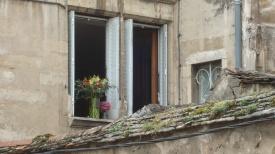 Flowers in open window, Beaune, France