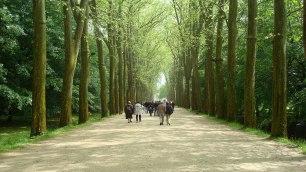 Path to Château de Chenonceau, Chenonceaux, France