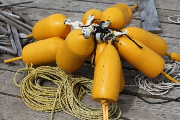 Lobster pot buoys, Port Clyde, Maine