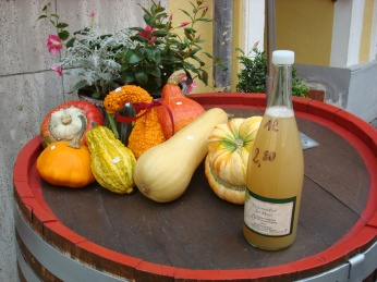 Autumn produce, Mosel Valley, Germany