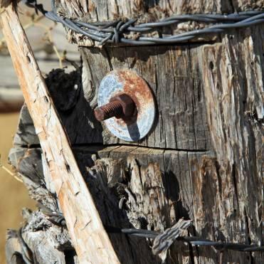 Utah fence post