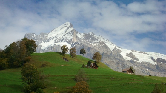 Swiss Alps, near Gridelwald, Switzerland