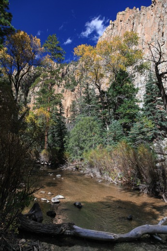 Cimarron Valley, New Mexico