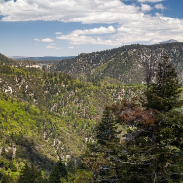 View from an overlook along CA 330